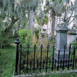 tombstones in cemetery during memphis ghost tour