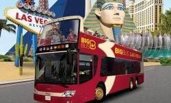 Big Bus Tours in Front of Luxor Hotel