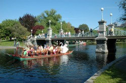 People riding swan boats at Boston Public Garden
