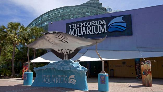 Tampa Florida Aquarium