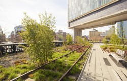 New York Highline