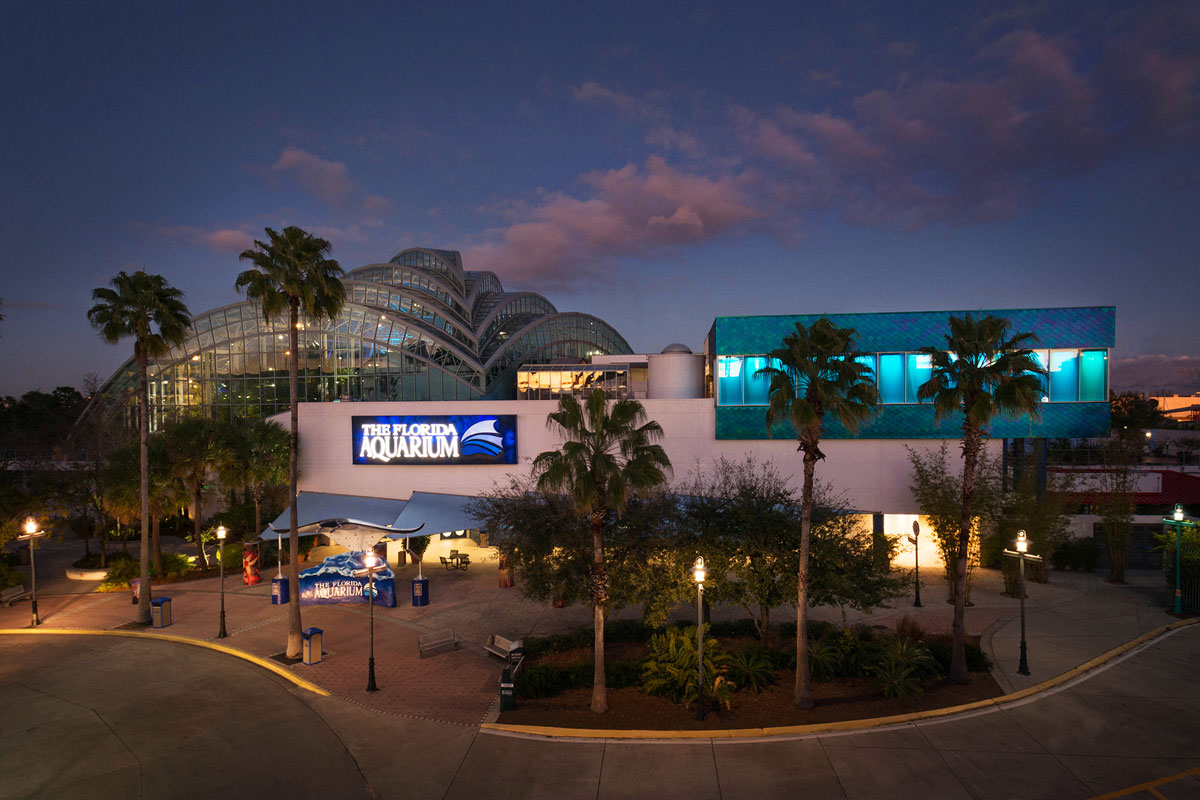 florida-aquarium-at-night