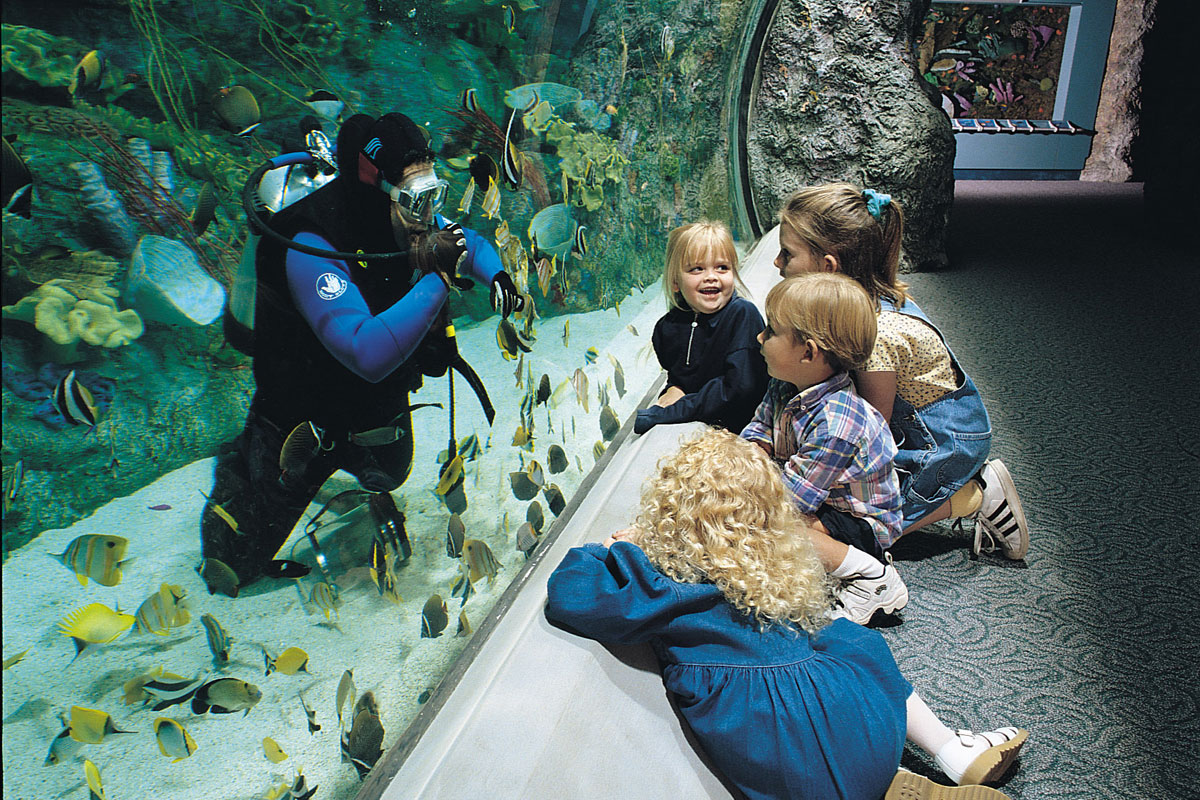 kids-learning-aquarium-on-the-pacific