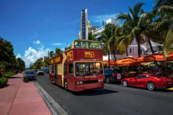big bus miami driving down street during miami shore excursion