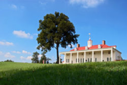 outside of mount vernon during bike roundtrip, one of the most scenic views in washington dc