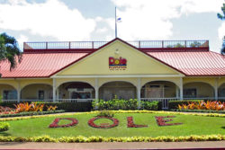 Honolulu Dole Plantation