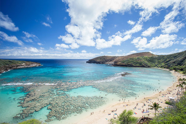 Hanauma Bay Aerial view