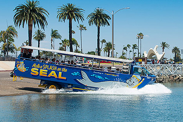 San Diego Seals Tours