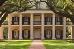Oak Alley Plantation Tour in New Orleans