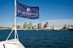 Photo of Whale Watching Hornblower Cruise