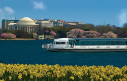 Washington DC Odyssey Lunch Cruise